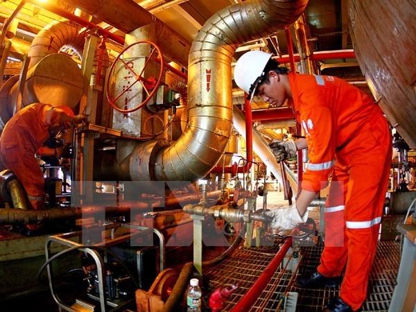 Vietnam, Dagestan reach oil and gas exploitation agreement hinh anh 1