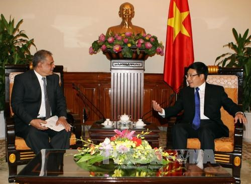 Vietnam, Pakistan hold first political consultation hinh anh 1