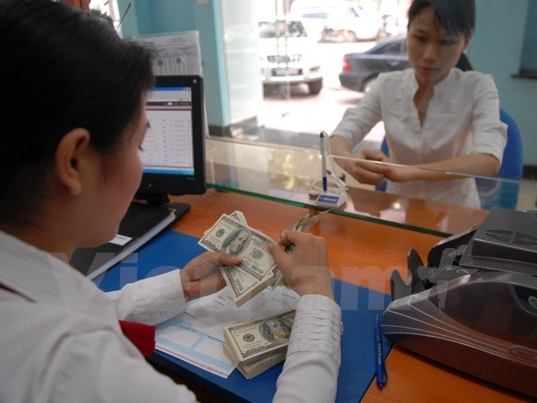Exchange rate adjustment has no immediate impacts on exporters hinh anh 1