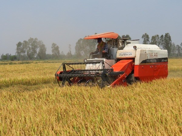 Central bank urges more loans for farmers hinh anh 1
