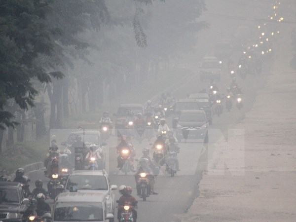 Sub-Mekong region cooperates in trans-boundary haze pollution hinh anh 1