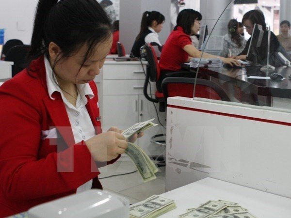 Int'l organisations laud SBV exchange rate adjustment hinh anh 1
