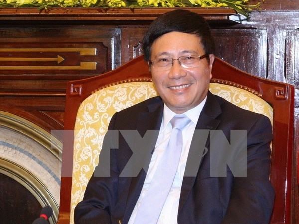 Diplomatic sector pioneers in international integration hinh anh 1