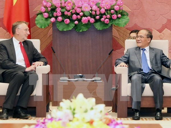 Vietnam hopes for EP's continued support to FTA with EU hinh anh 1