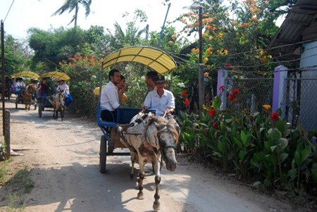 Tourism focuses on southeast region hinh anh 1