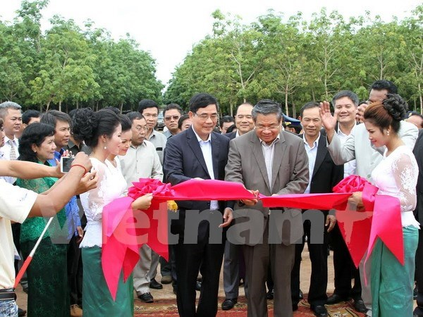 Vietnam rubber latex processing plant built in Cambodia hinh anh 1