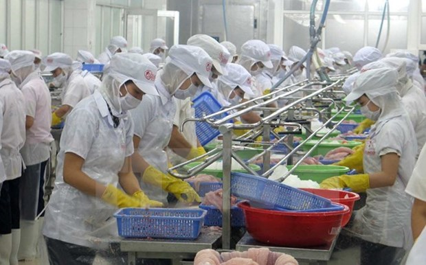 Challenges facing seafood exporters in Chinese market spotlighted hinh anh 1