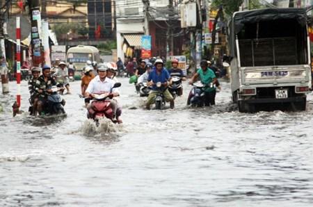Embankment to safeguard Saigon River from floods hinh anh 1