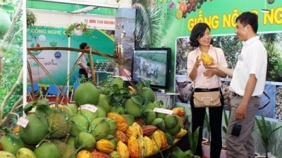 Hanoi to open agriculture and craft village fair hinh anh 1