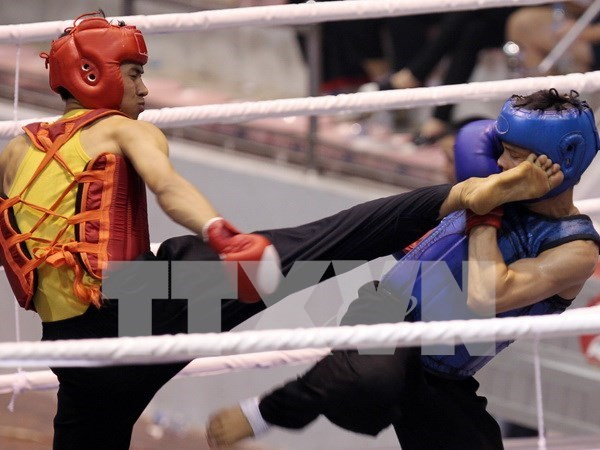 Vietnam-RoK Professional Boxing Tournament to open in October hinh anh 1