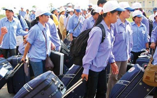 Efforts to protect rights of migrant workers hinh anh 1