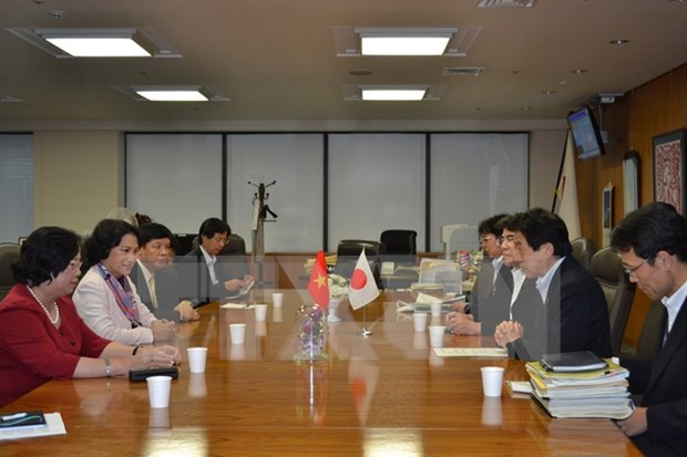 Vietnam, Japan work together in human resources development hinh anh 1