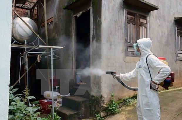 Dong Nai acts to contain dengue hinh anh 1