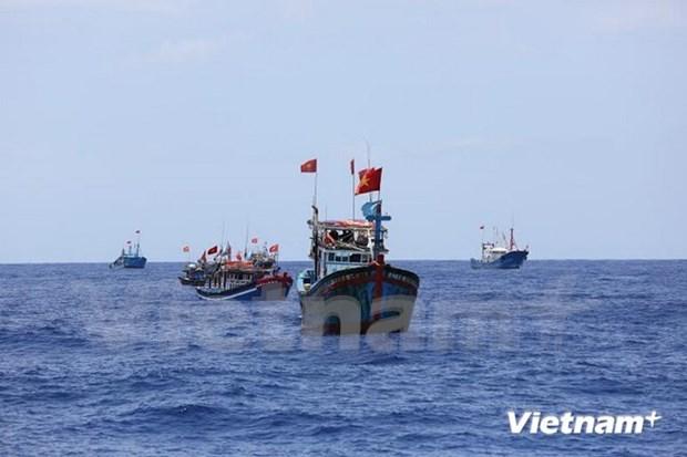 Ca Mau facilitates offshore fishing hinh anh 1