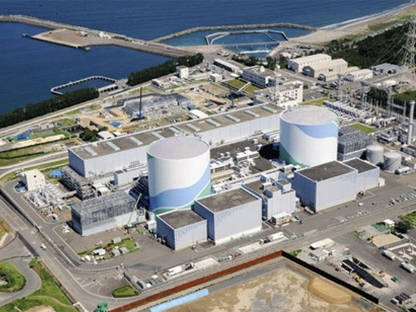 Vietnam, Japan hold training courses on nuclear power safety hinh anh 1