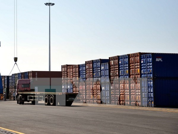 Logistics centre inaugurated in Da Nang hinh anh 1