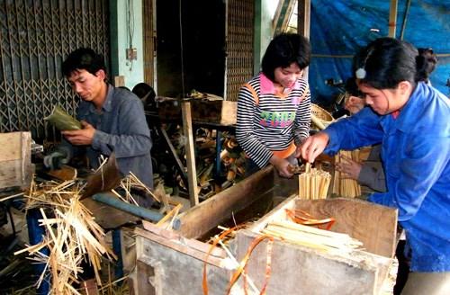 "International agencies help Thanh Hoa develop ""luong"" bamboo hinh anh 1"