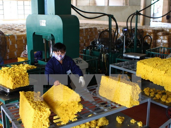 Vietnam hopes to join Int'l Tripartite Rubber Council hinh anh 1