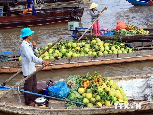 Mekong Delta region boosts tourism products hinh anh 1