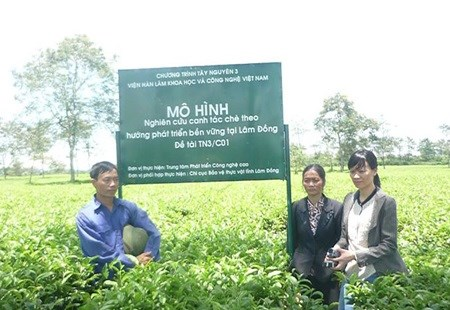 High-tech production needed in farming hinh anh 1