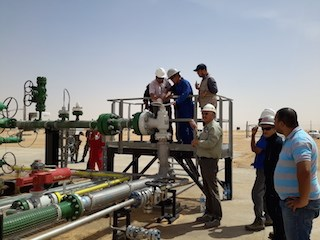 PVN welcomes first oil flow at joint project in Algeria hinh anh 1