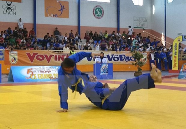 Vovinam gains growing following across Africa hinh anh 1