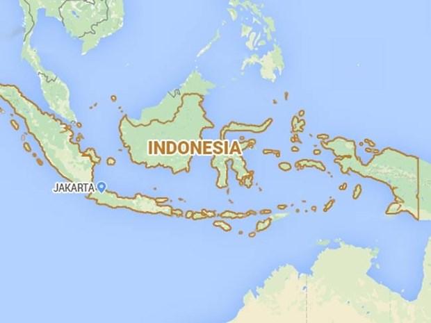 Strong quake hits Indonesia, no tsunami warning issued hinh anh 1