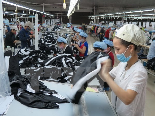 Vietnamese garment-textile, footwear firms increase EU access hinh anh 1