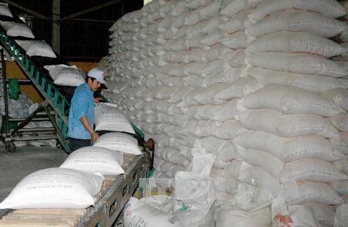 Vietnam expects 45 million tonnes of rice this year hinh anh 1