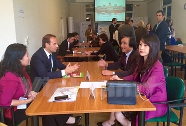 Vietnam, Hungary to bolster bilateral trade ties hinh anh 1