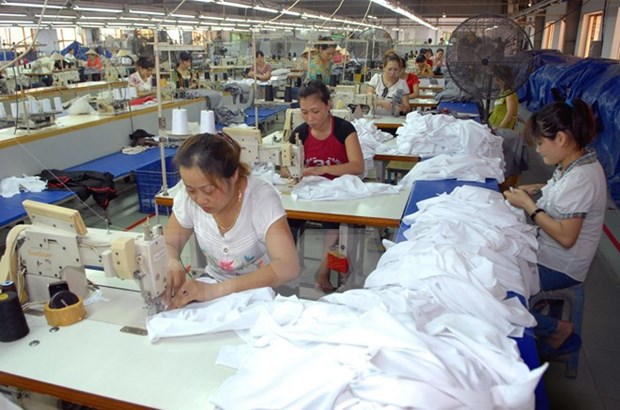 Labour rights violations inspected in apparel industry hinh anh 1