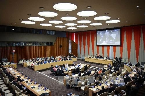 Vietnam elected to UN Economic and Social Council hinh anh 1