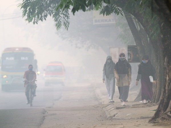 Indonesia haze pollution spreads to southern Philippines hinh anh 1