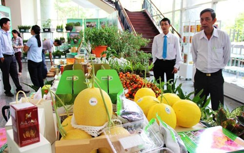 Agriculture festival introduces farmers' outstanding products hinh anh 1