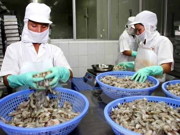 Vietnam, DPRK eye economic-trade expansion hinh anh 1