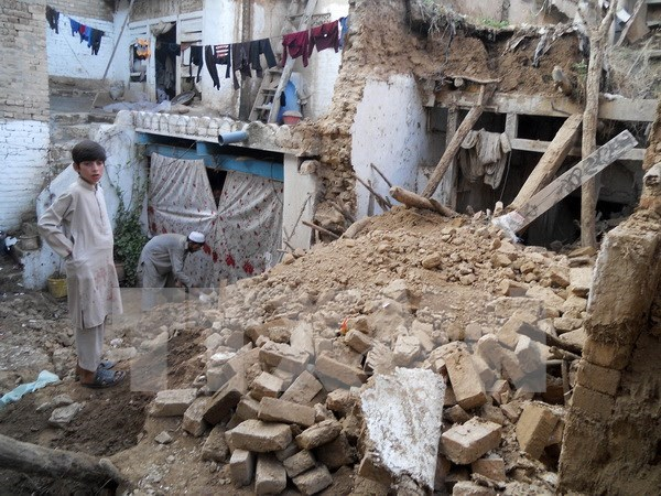 Vietnam keeps an eye on Vietnamese in quake-hit countries hinh anh 1