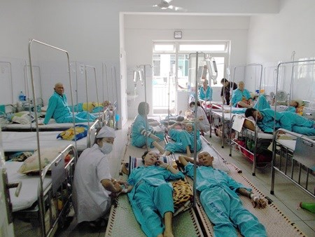 Hungary backs Can Tho in building cancer hospital hinh anh 1