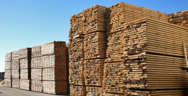 Chile plans timber exports to Vietnam hinh anh 1