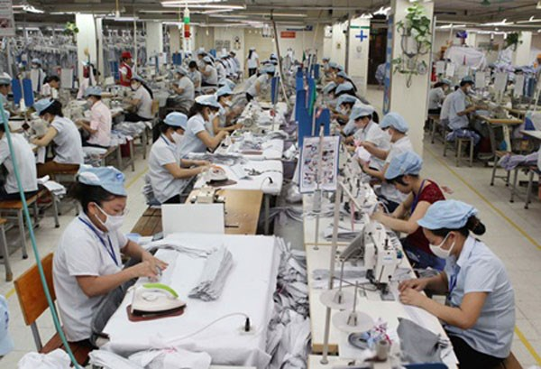 Textile, garment stocks to get boost from FTAs hinh anh 1