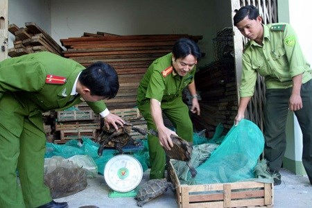 Vietnam, African nations target wildlife trade hinh anh 1