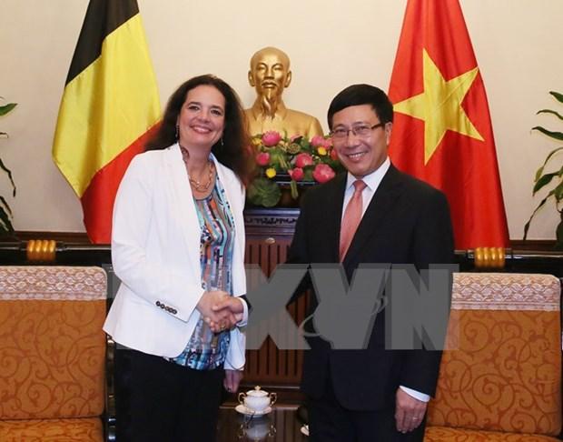 Deputy PM receives visiting President of Belgian Senate hinh anh 1