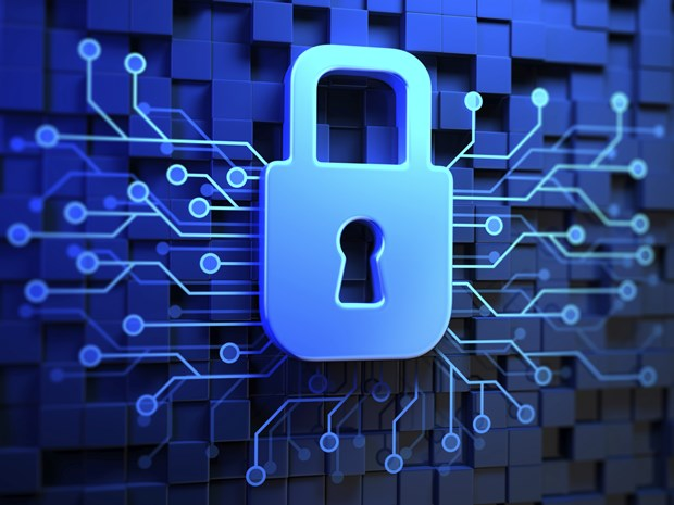 Vietnam promotes info security hinh anh 1