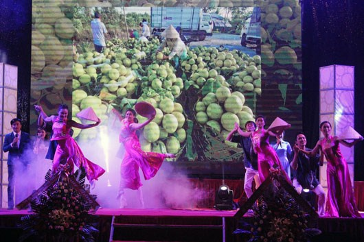 Central Highlands agriculture, trade fair 2015 opens hinh anh 1