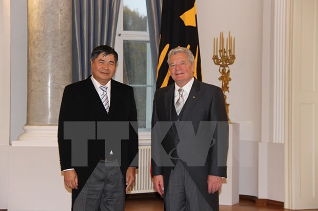 New ambassador commits to deepening Germany ties hinh anh 1