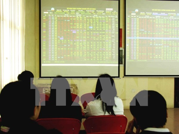 Large-caps suffer blue chip stocks hinh anh 1