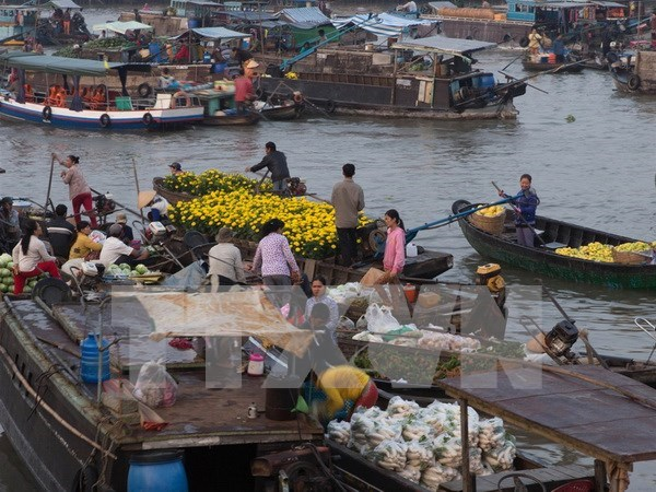 Can Tho to fix up floating market hinh anh 1