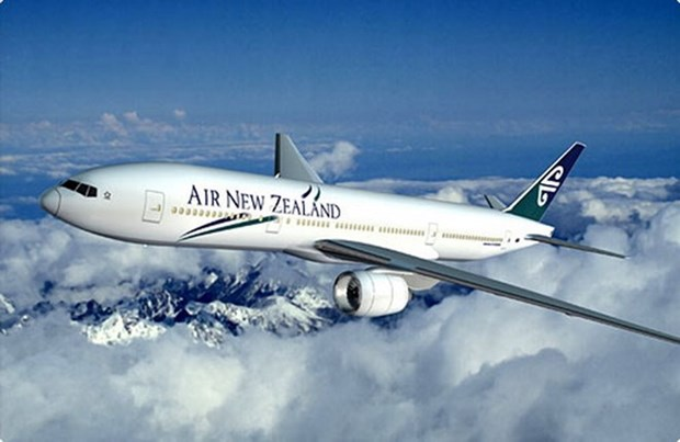 Air New Zealand to consider direct route to Vietnam hinh anh 1