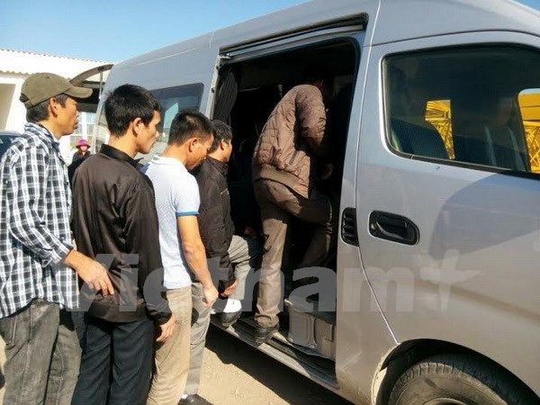 First group of Vietnamese workers in Algeria return home hinh anh 1