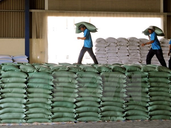 First batch of rice to arrive in Indonesia next year hinh anh 1