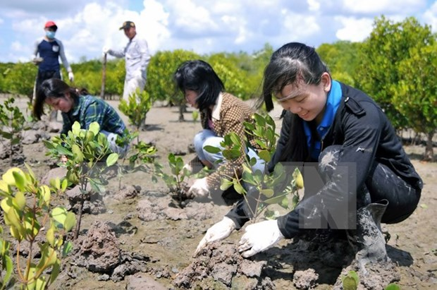 EU furthers support for Vietnam to cope with climate change hinh anh 1